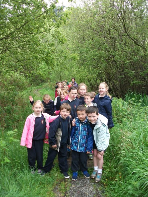 Bog Meadow Hike